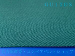 GU12DS(表面)