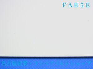 FAB5E(表面)
