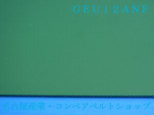GEU12ANF(表面)