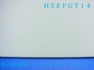 H5EFGT14(裏面)