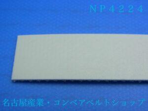 NP4224(表面)