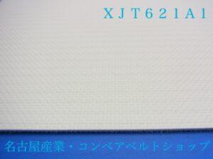 XJT621A1(表面)