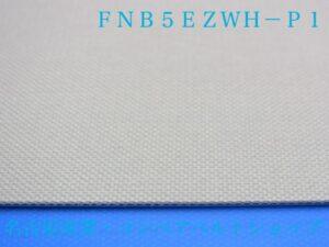 FNB5EZWH-P1(裏面)