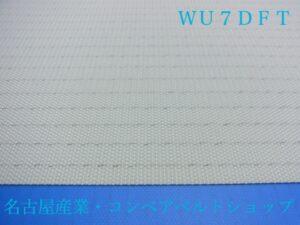WU7DFT